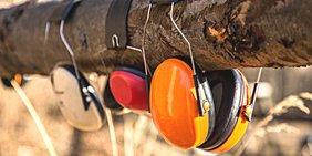 Gehörschutz an Baumstamm